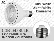 Ampoule LED COB PAR30 13W Dimmable