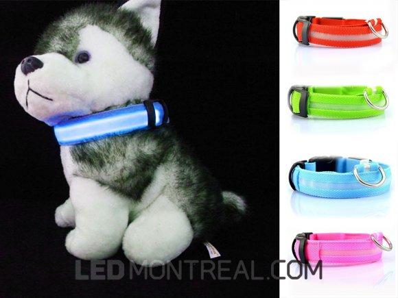 LED Light Pet Collar
